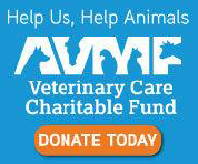 Help us, help animals! Donate to the Veterinary Care Charitable Fund. Donate today!