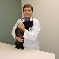 Dr. Lester with black cats