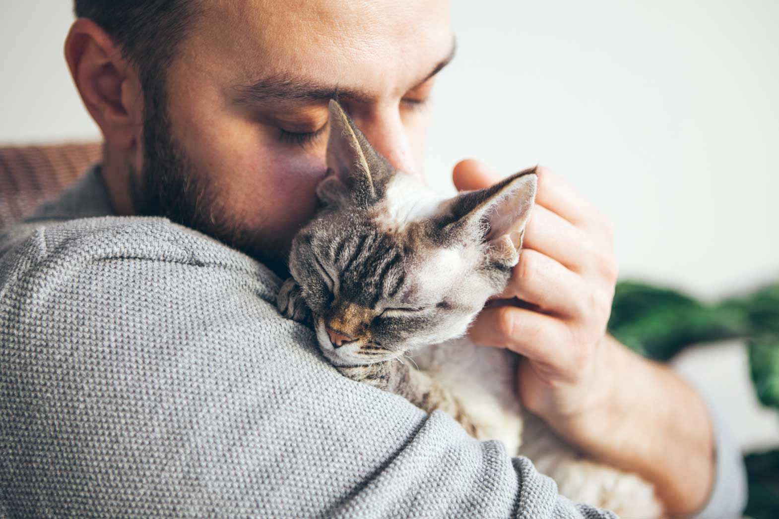 Man with his cat | Fighting Feline Cancer